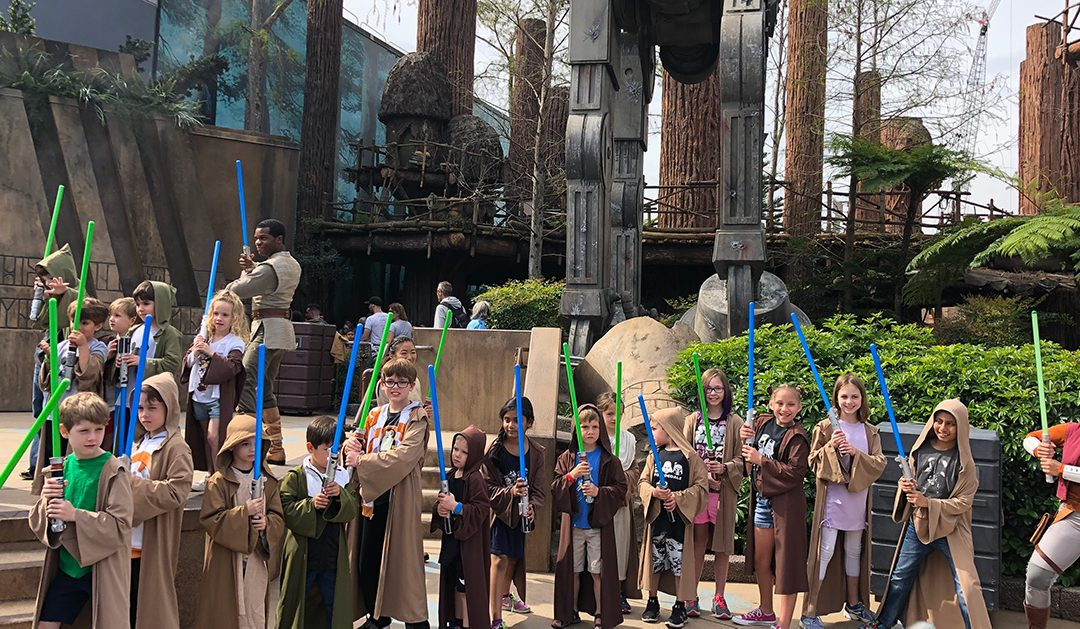 Make the most of the Jedi Training Academy