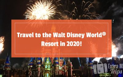 Travel to the Walt Disney World® Resort in 2020!